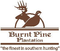 Burnt Pine Plantation Deer and Quail Hunting